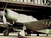 """Fiat G.50 """"Freccia"""""""
